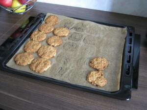 Biscuiti de ovaz de casa