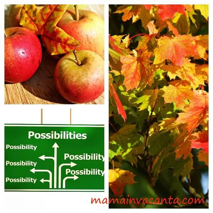 jurnal de multumire: posibilitati, toamna insorita, frunze ingalbenite, mere rosii frumoase si zambarete
