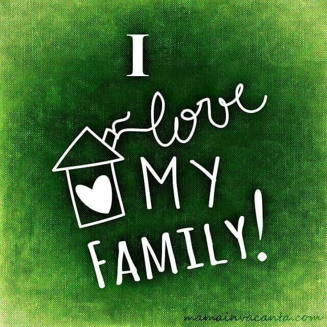 jurnal, familie, acasa, copii, carte