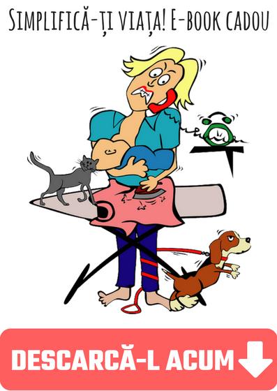 e-book gratuit treburi gospodaresti